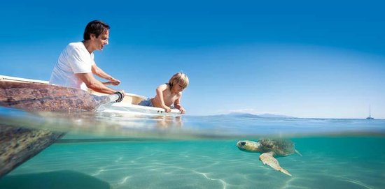 La Gran Barrera de Coral, Australia: Turtle Spotting, Cairns - Great Barrier Reef