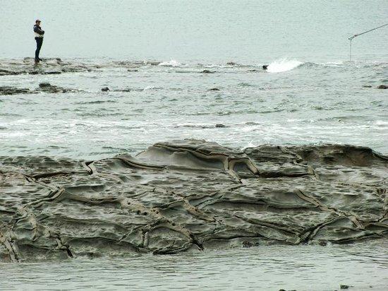 Aoshima Island: 釣り人と鬼の洗濯板
