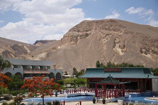 Movenpick Resort Taba Hotel : Vue Djabel