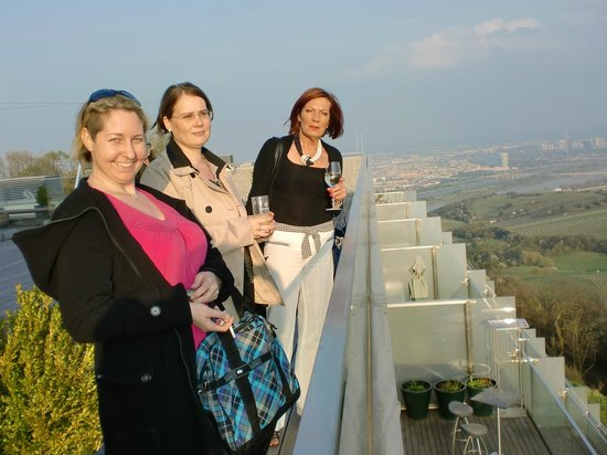 Suite Hotel Kahlenberg: Blick vom Dach