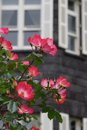 Former Fukukawa Gardens: 天然スレート葺きのレンガ造りがバラによく似合う