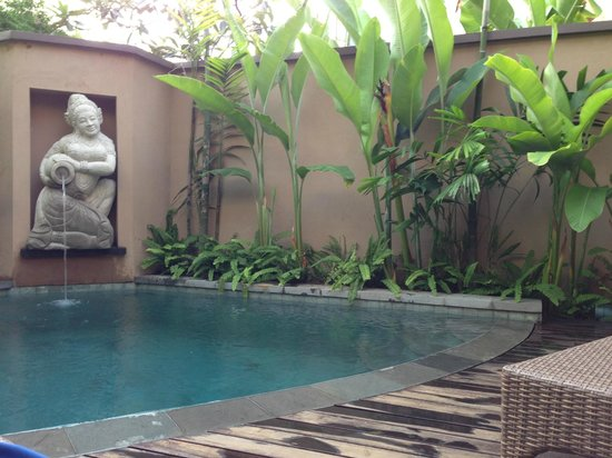 Kanishka Villas: own pool