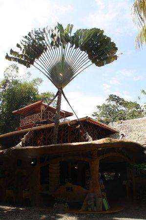 Hotel La Costa de Papito: Receptionen