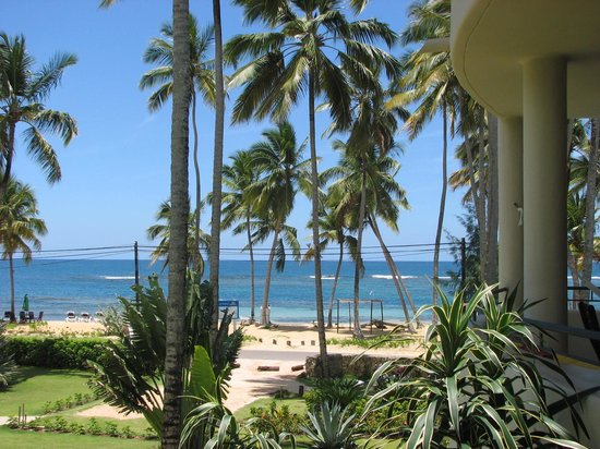 Hotel Alisei: Room View