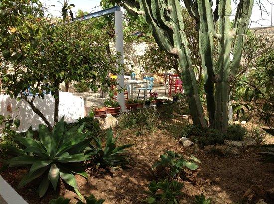 Casale Novello Bed & Breakfast : Il giardinetto interno dove si fa colazione