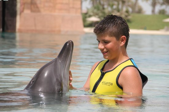 Atlantis, The Palm: delfinarium