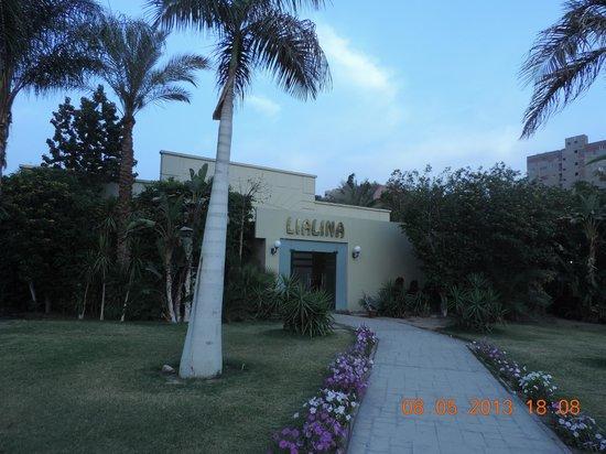 Grand Pyramids Hotel: lawns