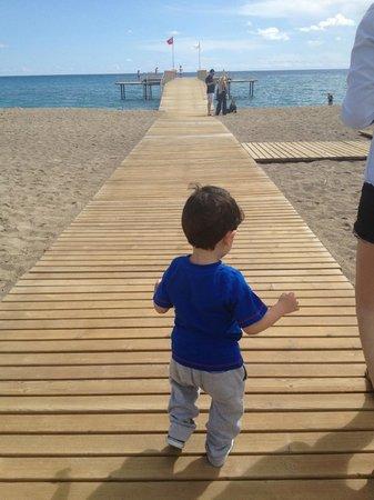 Silence Beach Resort: beach