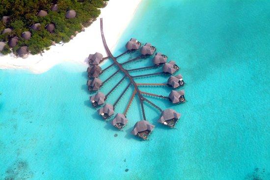 Coco Palm Dhuni Kolhu : Lagoon Villas - Aerial View