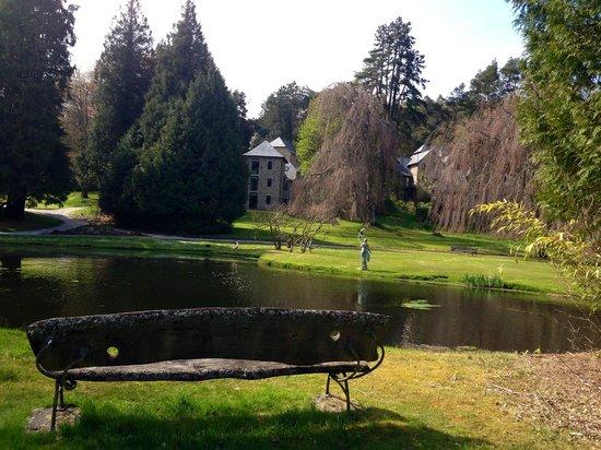 Bovey Castle Hotel: Pond