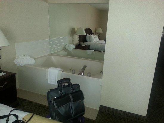 Holiday Inn Dubuque: Jacuzzi