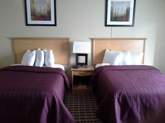 Quality Inn & Suites Fort Bragg : DOUBLE BED  ROOM