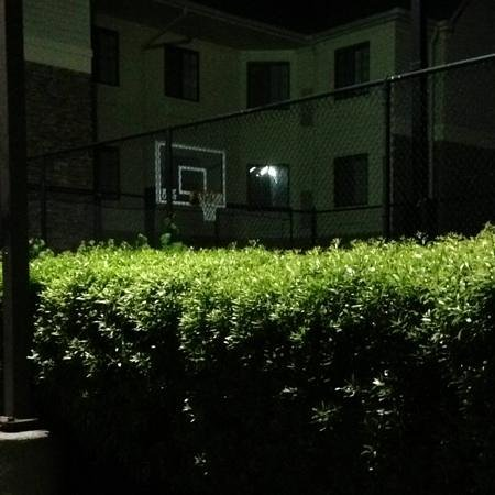 Sonesta ES Suites Charlotte : half length fenced in basketball court with two hops