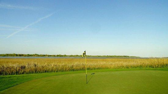 The Westin Savannah Harbor Golf Resort & Spa: On the back nine - gorgeous