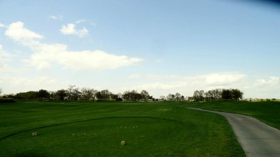 The Westin Savannah Harbor Golf Resort & Spa: Great conditions