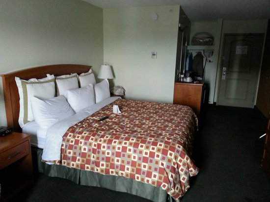 Service Plus Inns & Suites Calgary: king size roon