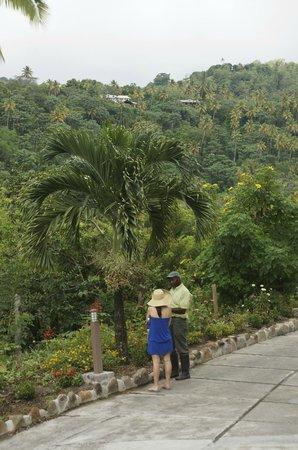 Ladera Resort: Tour with Justin
