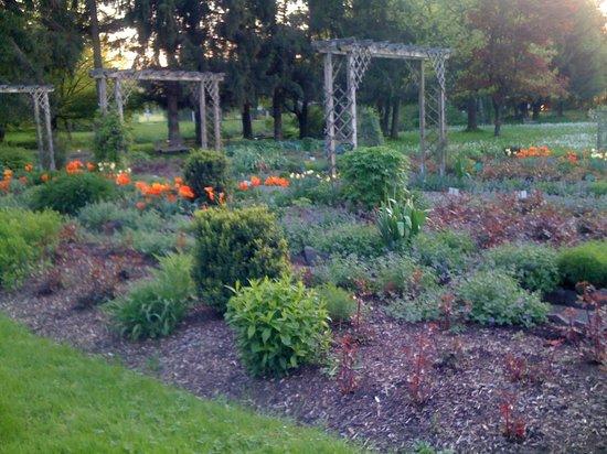 Kneippianum & Spa: Jardim, com vários circuitos
