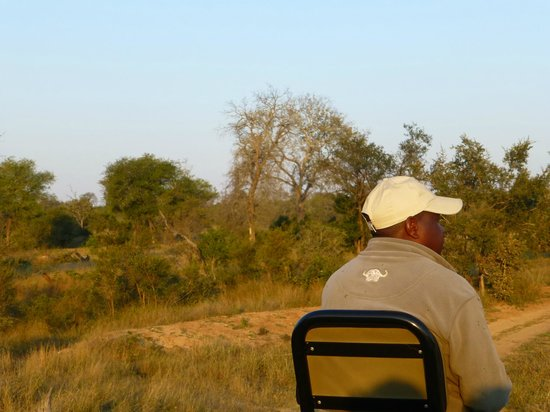 Inyati Game Lodge, Sabi Sand Reserve: Safari Game Drive