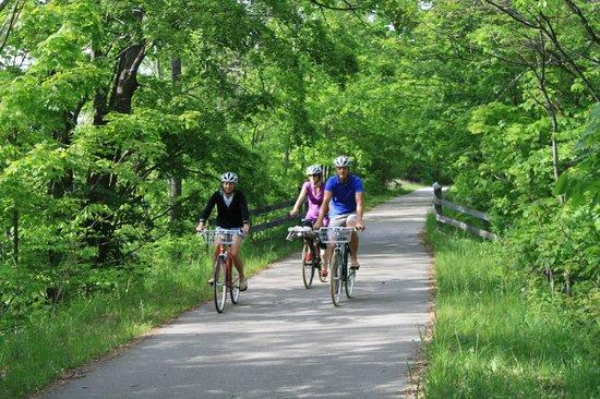 Grand Traverse Bike Tours: Riding down the Leelanau/TART Trail