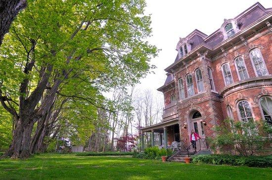 The Highland Manor: The backyard