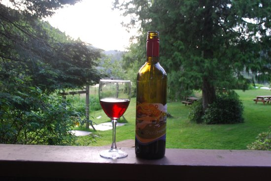 Cusheon Lake Resort : enjoying a glass of local wine from our cabin