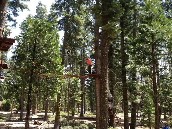 Tahoe Treetop Adventure Parks: 1st Flying Monkey Course