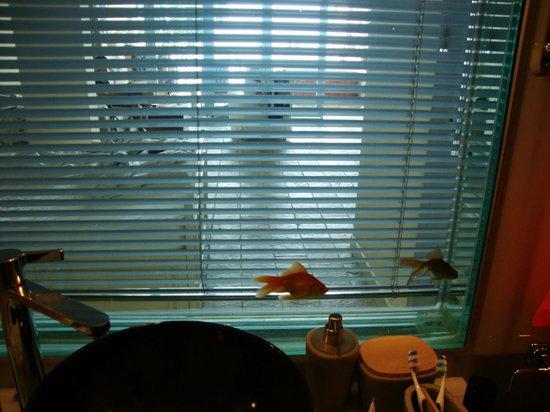 Beyaz Yunus Hotel: Fish tank between bedroom and bathroom