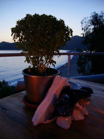 Beyaz Yunus Hotel: Dinner table