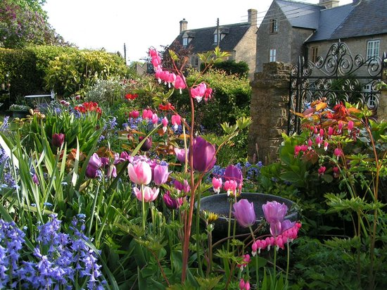 The Forge Garden