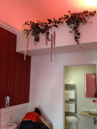 Hotel La Casa di Morfeo: room detail (plants)