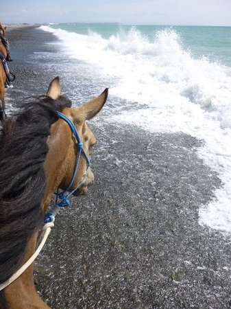 Boutique Horsetreks Day Tours : Riding on the beach