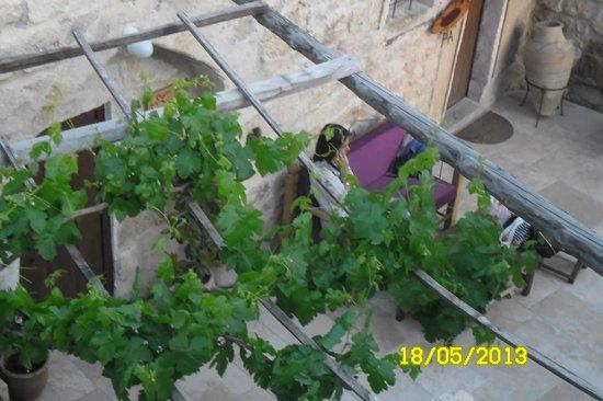 Lamihan Hotel Cappadocia : Bahçesi