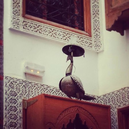 Riad Verus : decoraçao