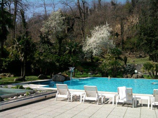 Millepini Terme Hotel: Acqua calda verde sole e aria pulita