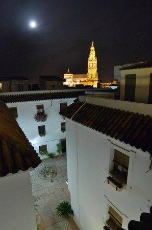 Hospederia del Atalia : Vista desde la terraza