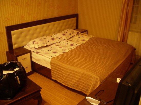 Anata hotel: The room