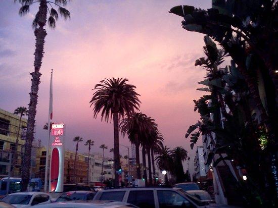Sea Blue Hotel: Colorful Sky Sunset @ The Hotel California