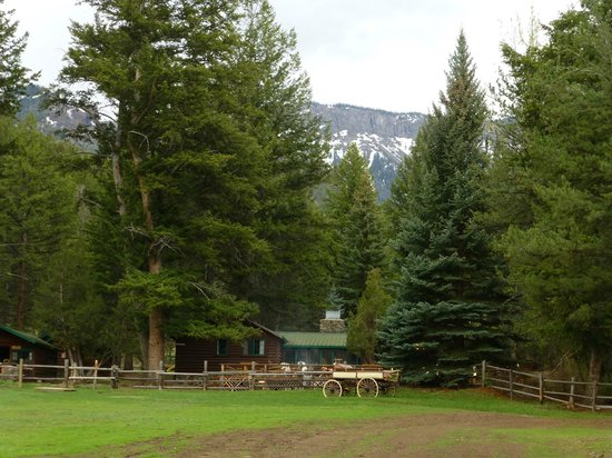 The Historic UXU Ranch: view of the cabins from the lawn