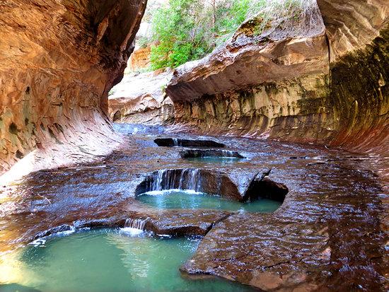 Zion National Park, UT: Zion Park