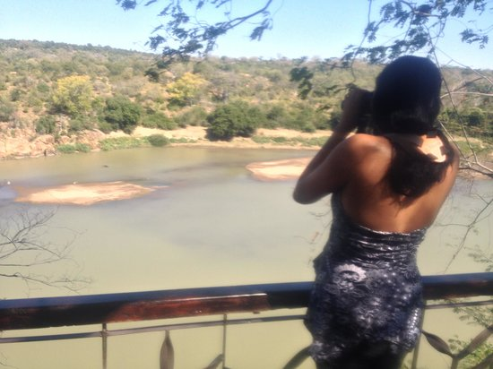 Chilo Gorge Safari Lodge: Checking out the hippos by the deck
