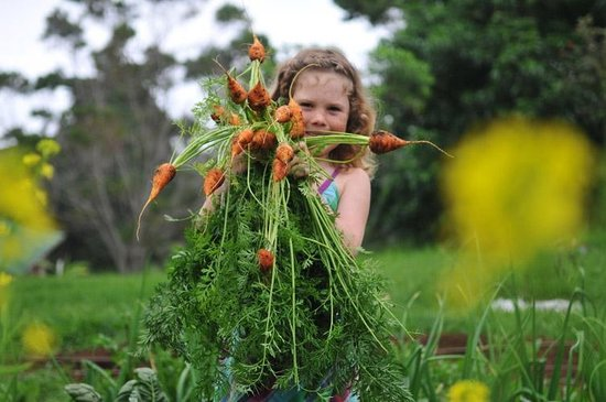 Keolamauloa: Growing Her Own Food
