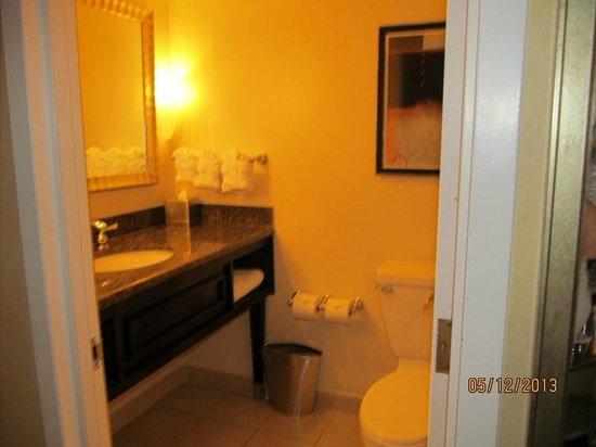 Hilton Arlington: Bath