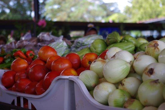 Sunday Market: Mercado del Valle Anton - Hortalizas