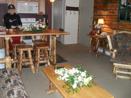 Fawn Valley Inn: Living room