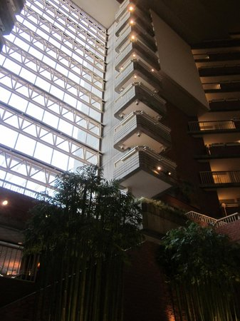 Hyatt Regency Cambridge, Overlooking Boston: Wonderful architecture on the interior