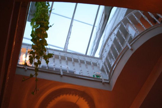 The Town House: Skylight