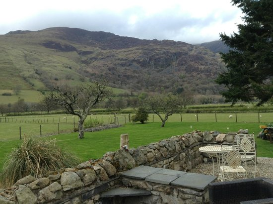 Dolffanog Fawr: The view from the back of the house