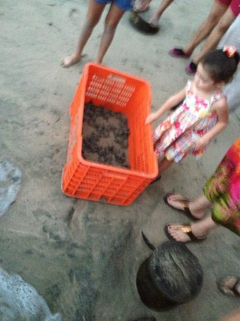 Pacifica Resort Ixtapa: Wonderful experience for the little ones