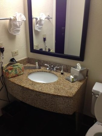 DoubleTree by Hilton Hotel and Executive Meeting Center Palm Beach Gardens: bizarre sink and tub at knee level.